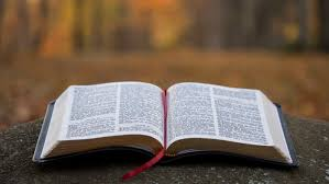 Change of bible translations for Wellspring (August 2019)