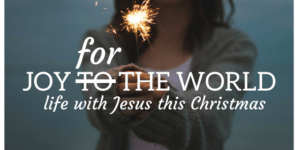 joy for the world front